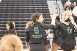 Junior shows talent on volleyball court